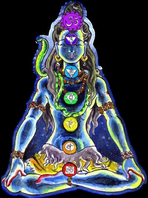chakra-Shiva.png